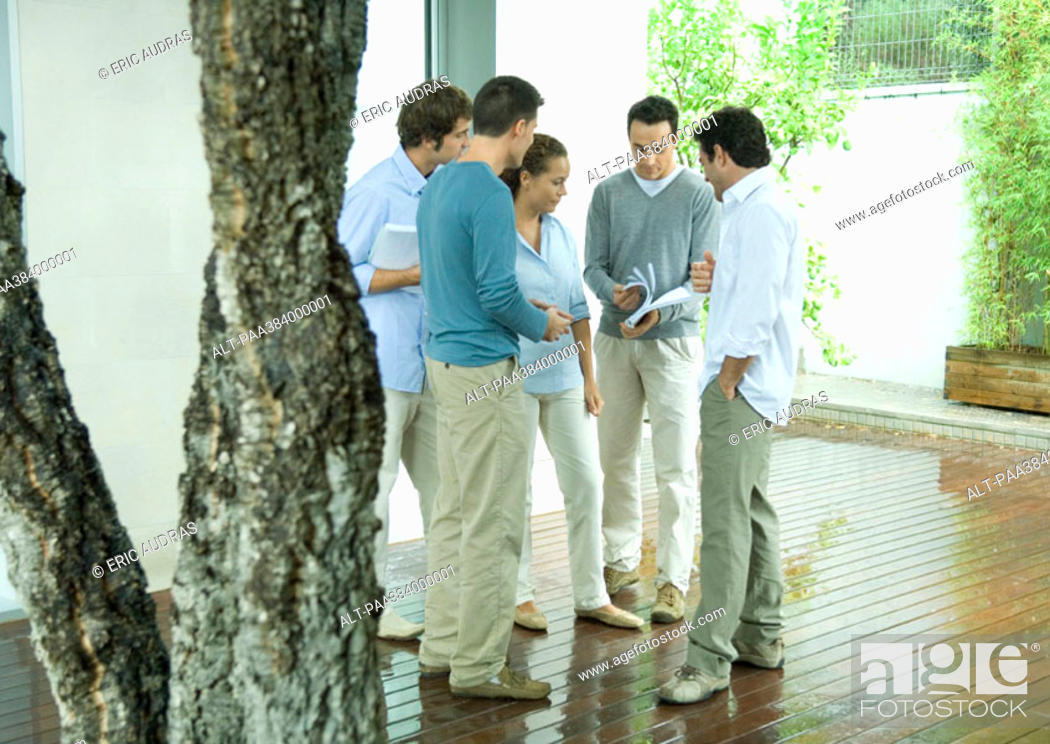 Stock Photo: Group of casually dressed adults looking at documents, full length.