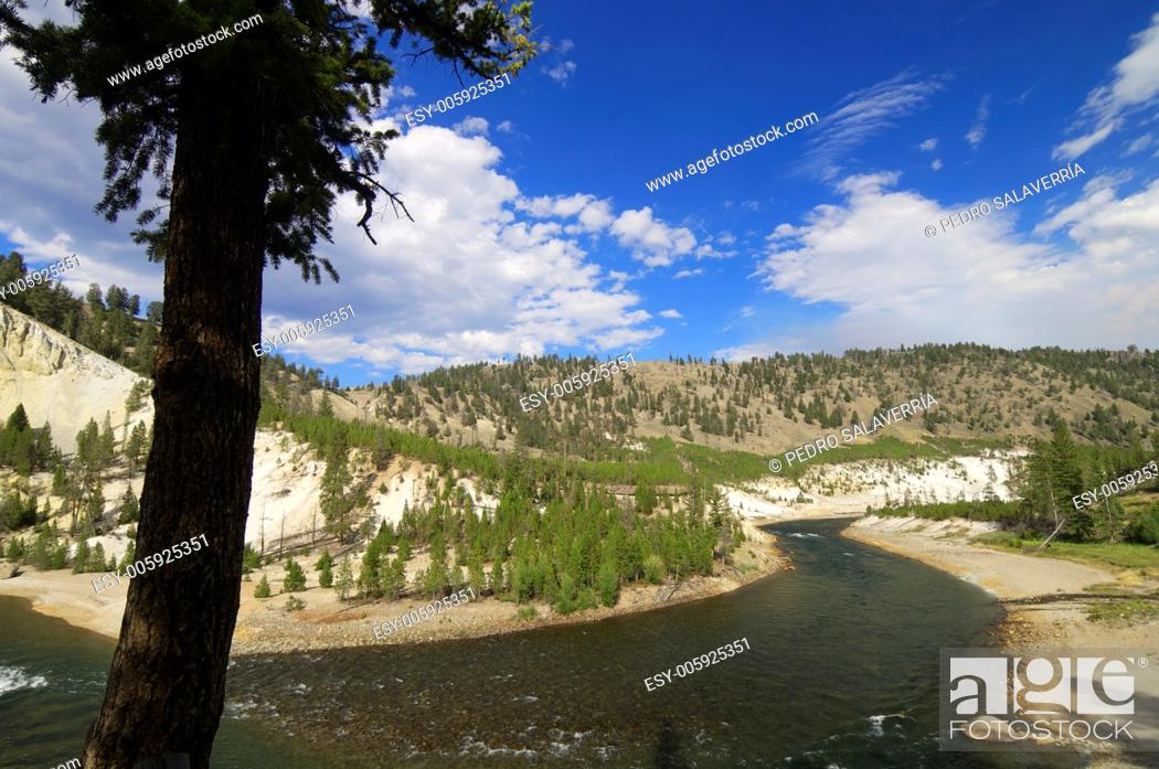 Stock Photo: Yellowstone river in Tower Roosevelt Area, Yellowstone National Park, United States.