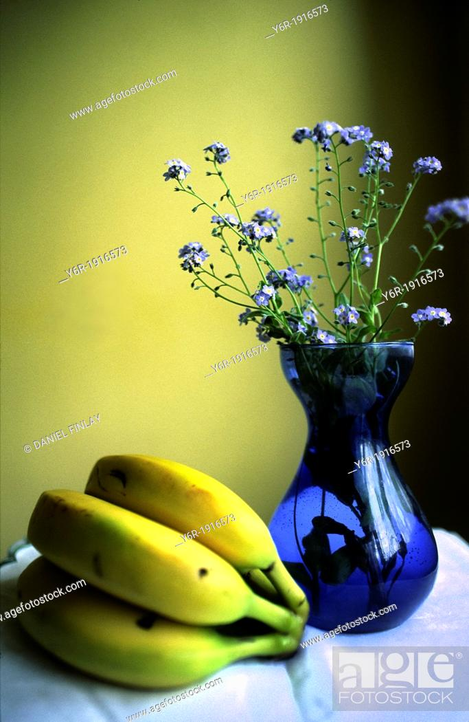 Stock Photo: Still life - bananas, forget-me-nots and blue vase - by a window in London, England.
