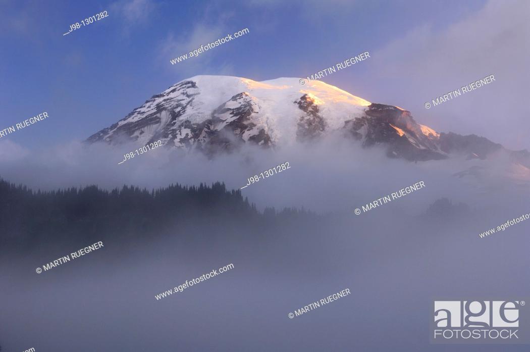 Stock Photo: Clouds surrounding summit of Mount Rainier at sunrise  Cascade Range, Pierce County, Mount Rainier National Park, Washington State, USA, America.