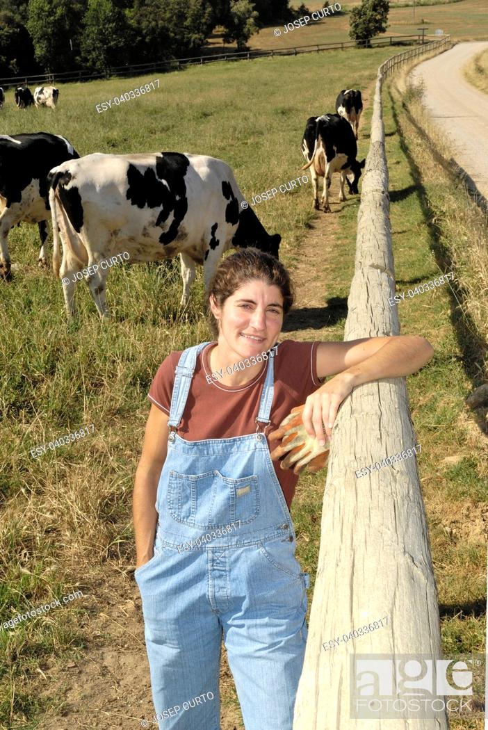 Stock Photo: portrait of a farmer with her cows in the field.