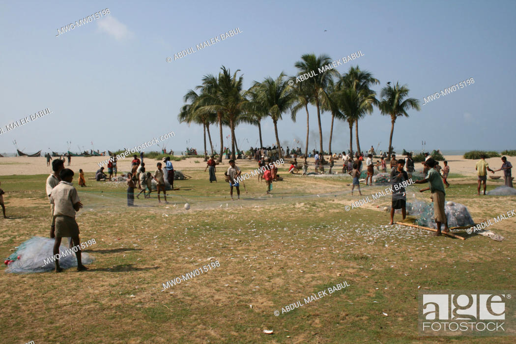 Stock Photo: Fishermen spreading their nets, at the beach of Shah Porir Island, Teknaf, Cox's Bazar, Bangladesh March 22, 2008.