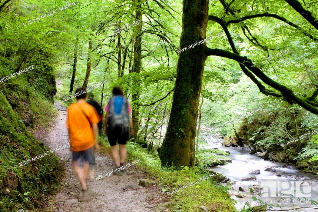 Stock Photo: Hikers walking to Gorges d'Holzarte, near Larrau village, Atlantics Pyrenees, in Aquitaine region  France.