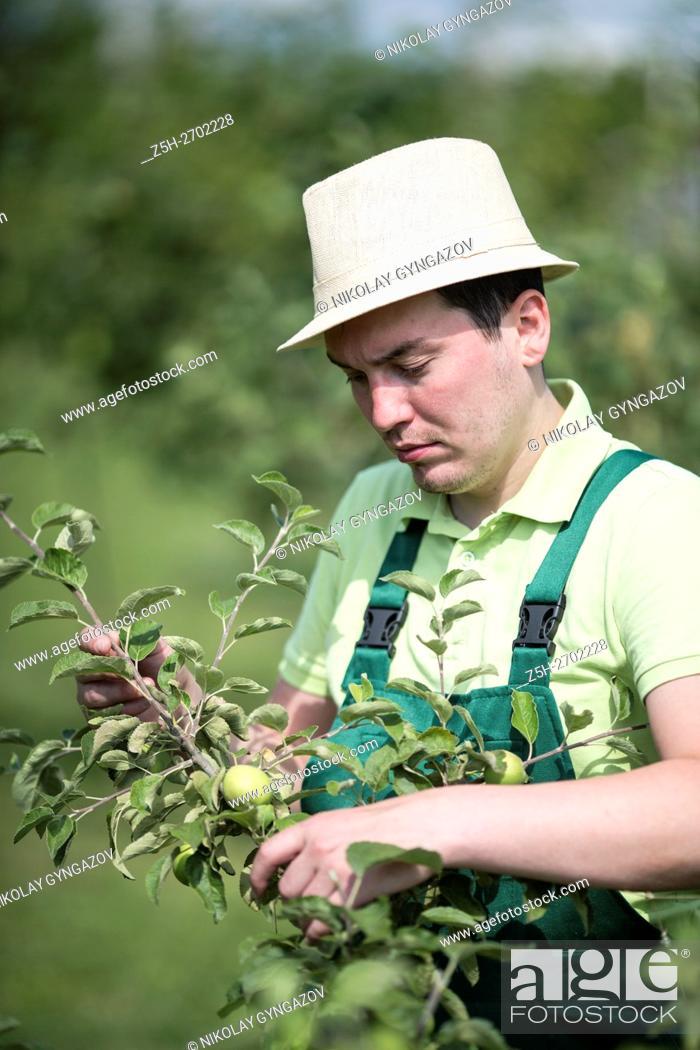 Imagen: Russia. Belgorod region. Young man in the summer garden.