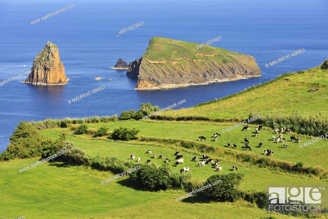 Imagen: Graciosa Nature Park, Graciosa island. Azores. Portugal.