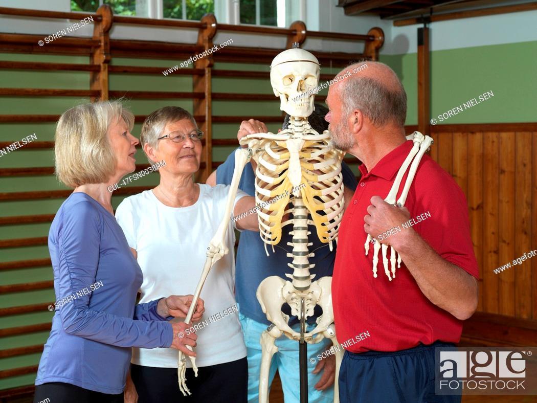 Imagen: Older people examining skeleton.
