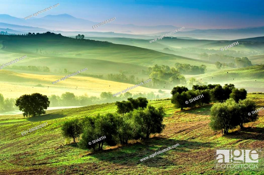 Stock Photo: Fog in the valley at sunrise, Tuscany.