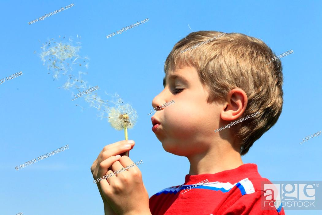 Stock Photo: boy blowing Dandelion seeds.