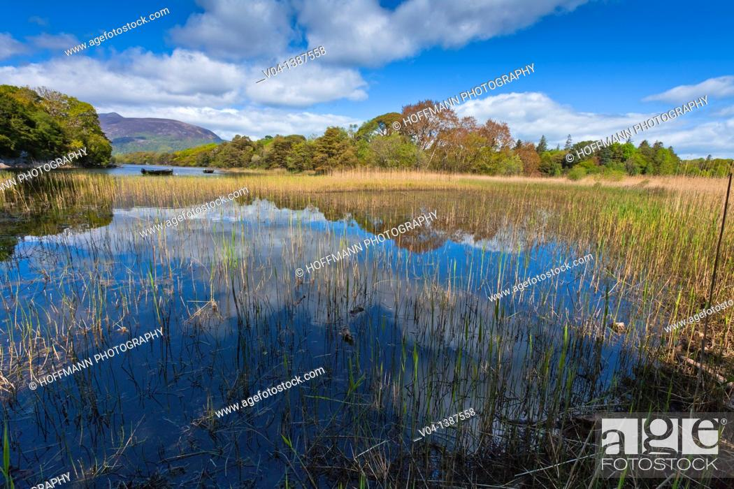 Stock Photo: Peaceful lake scene in the Killarney National Park, County Kerry, Ireland, Europe.