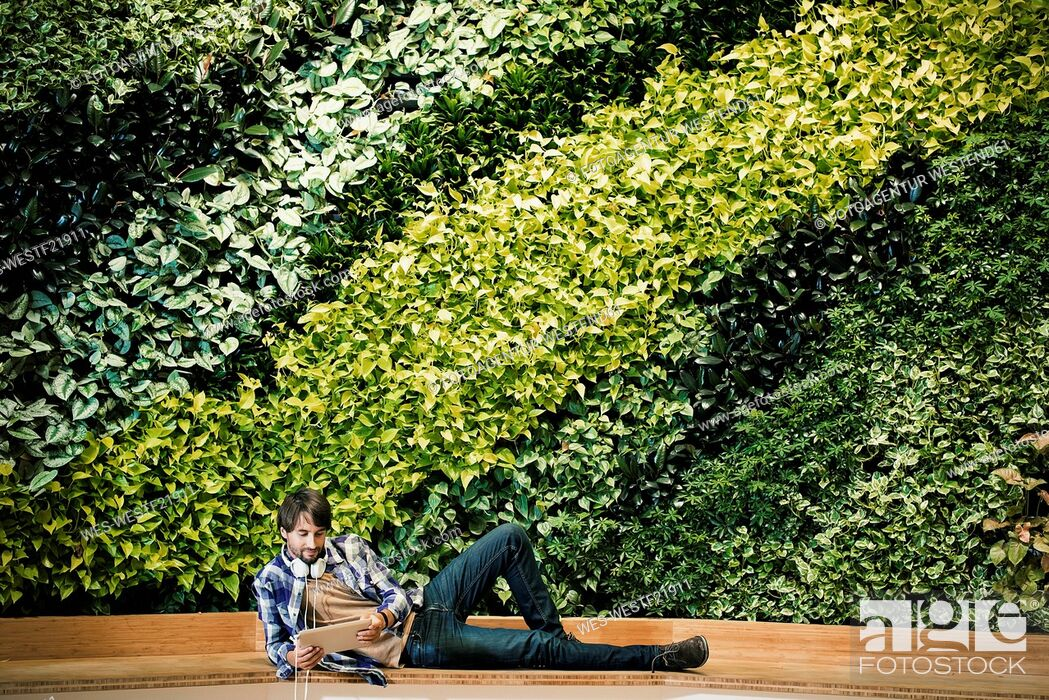 Stock Photo: Young man sitting infront of green plant wall, using digital tablet.
