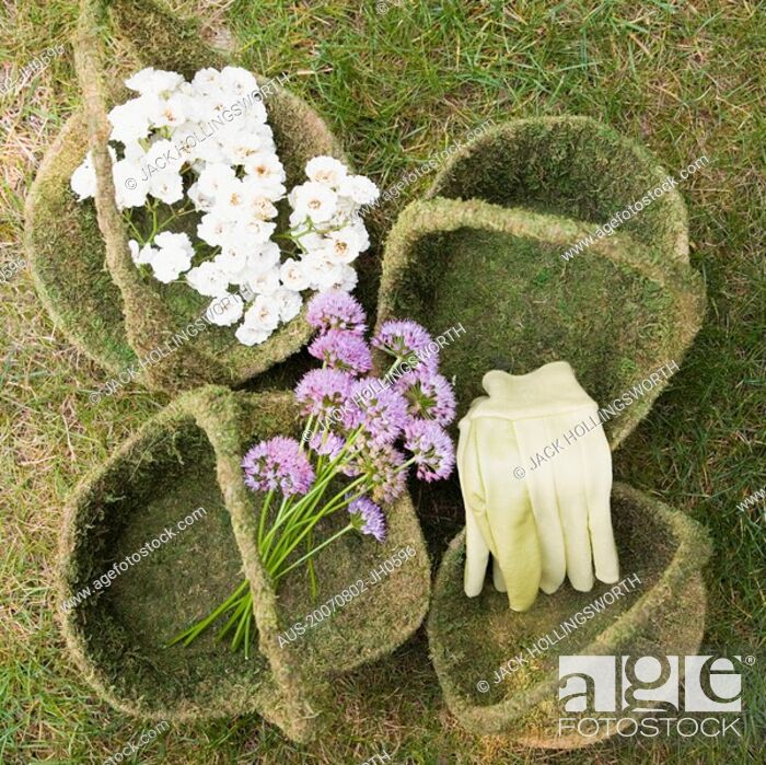 Stock Photo: High angle view of flowers and gloves in baskets.