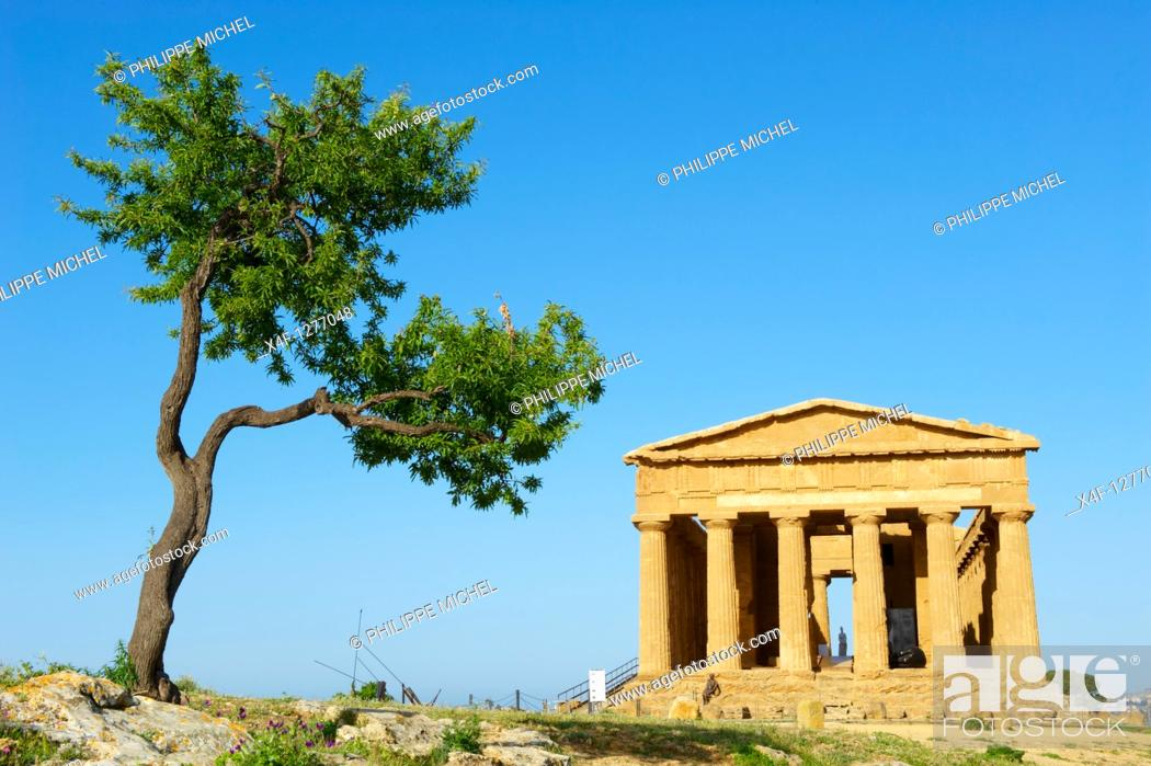 Stock Photo: Italy, Sicily, Agrigento, Valley of the Temples, Valle dei Templi, Concordia Temple.