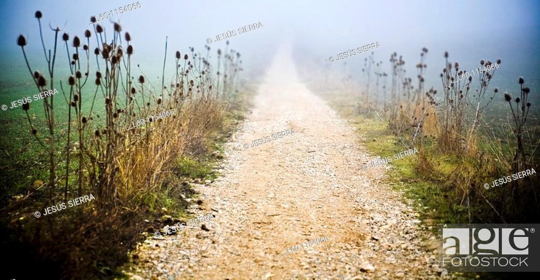 Stock Photo: 'Camino de Santiago' Way Of St. James in Navarre, Spain.