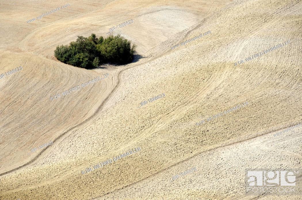 Stock Photo: Landscape south of Siena, Crete Senesi, Tuscany, Italy, Europe.