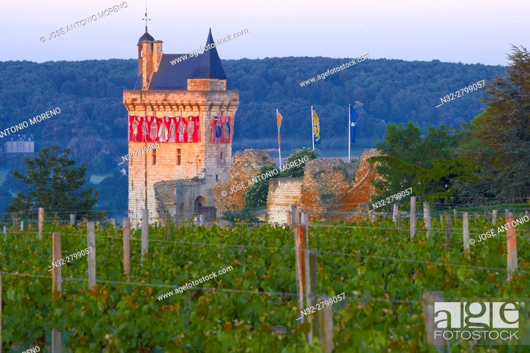 Stock Photo: Chinon, Castle, Château de Chinon, Chinon Castle at Dawn, Indre-et-Loire, Pays de la Loire, Loire Valley, UNESCO World Heritage Site, France.