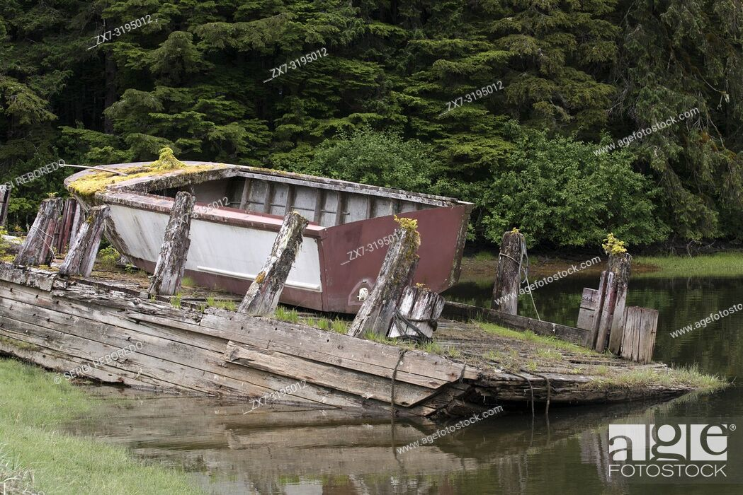Imagen: Old boat in a temperate rainforest on the Brothers Islands between Stephens Passage and Frederick Sound. Alexander Archipelago, Southeast Alaska.