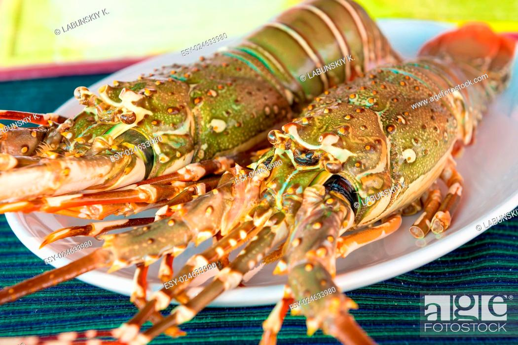 Stock Photo: fresh raw lobsters on the table in a plate.
