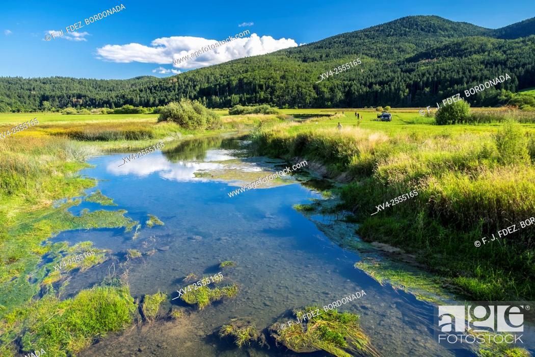 Stock Photo: Cerknica lake spring. Slovenia.