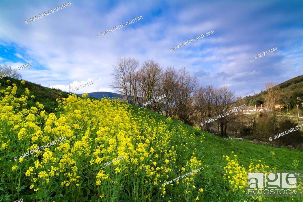 Stock Photo: Ramales de la Victoria. Cantabria, Spain.