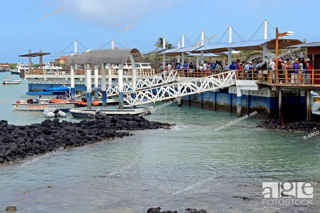 Wharf and jetties, starting point for Galapagos cruises