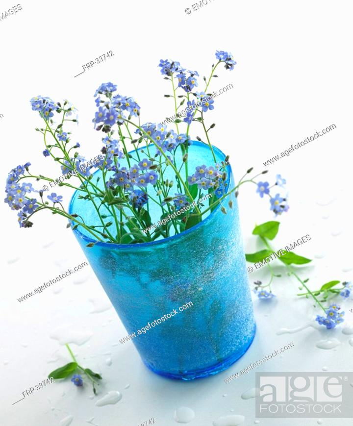 Stock Photo: blue glass with forget-me-not.