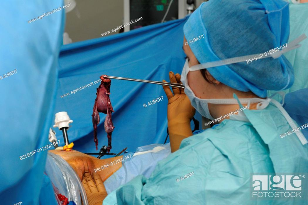 Essays On Science Stock Photo  Photo Essay At Lyon Hospital France Department Of Urology  Sex Reassignment Sugery Transgender Ftm Here Hysteroovariectomy Under  Persuasive Essay Topics For High School Students also Science Essay Questions Photo Essay At Lyon Hospital France Department Of Urology Stock  Examples Of Good Essays In English
