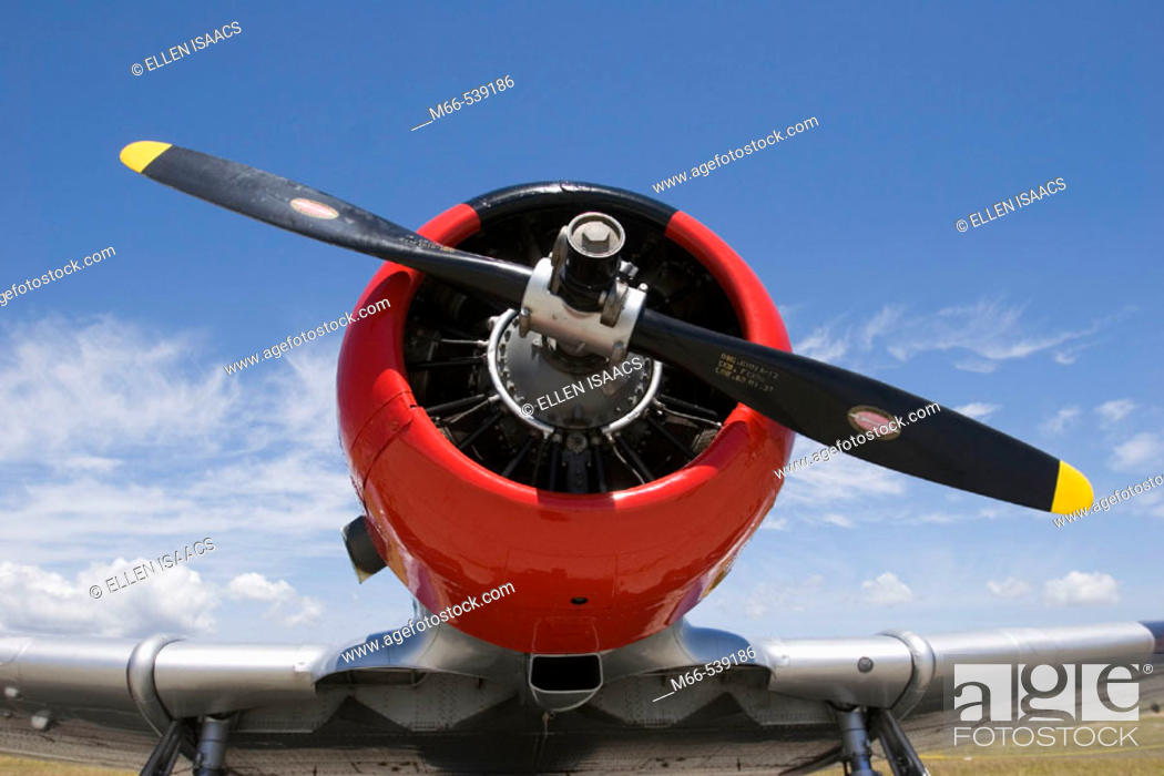 Stock Photo: Front of North American AT-6A-NT Texan airplane at an air show.