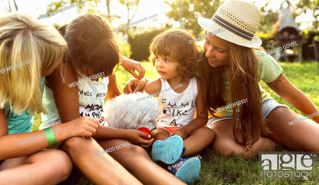 Stock Photo: Four girls playing with a puppy on a meadow.