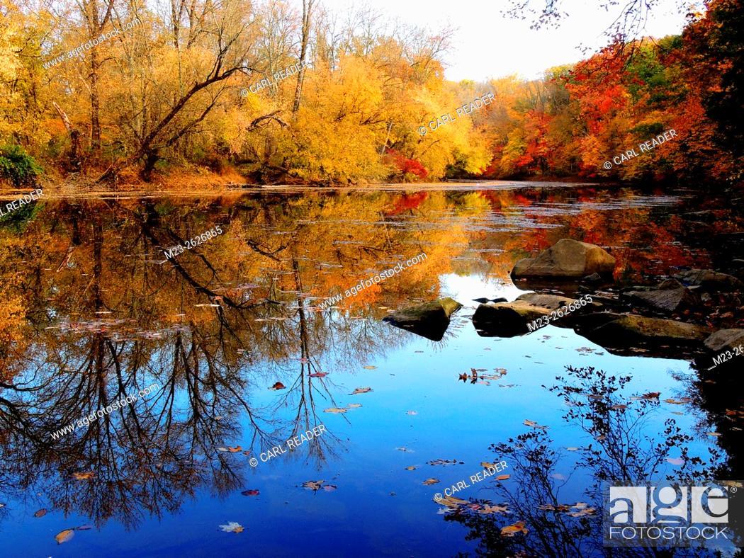 Stock Photo: An autumn scene along a stream brightens up a cloudy day, Pennsylvania, USA.