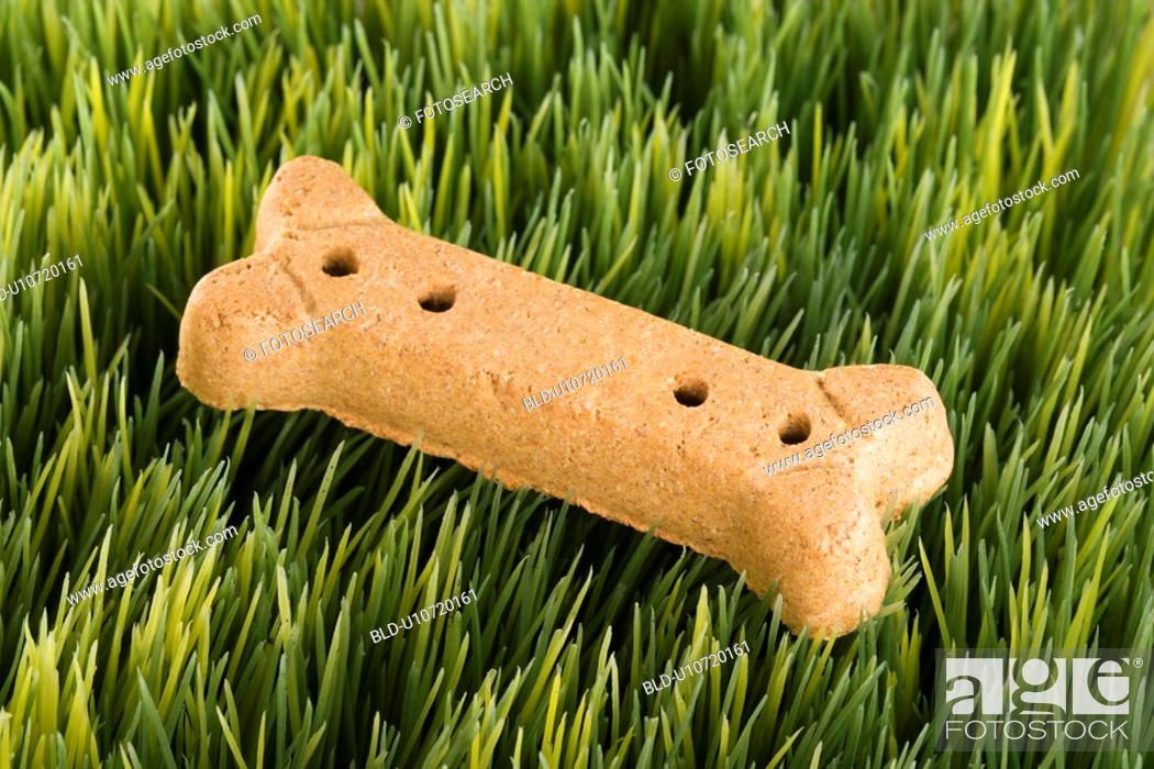 Stock Photo: Studio shot of a dog treat laying in grass.