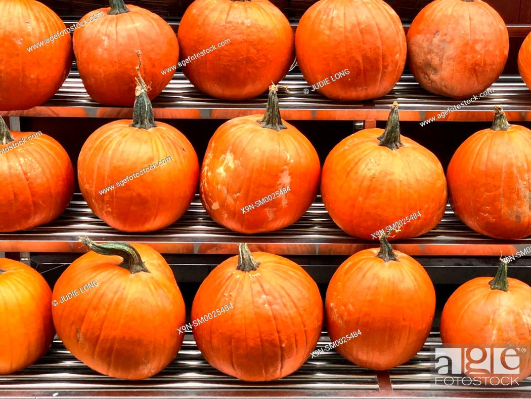 Stock Photo: Pumpkins Displayed at an Outdoor Manhattan, NYC Food Market.