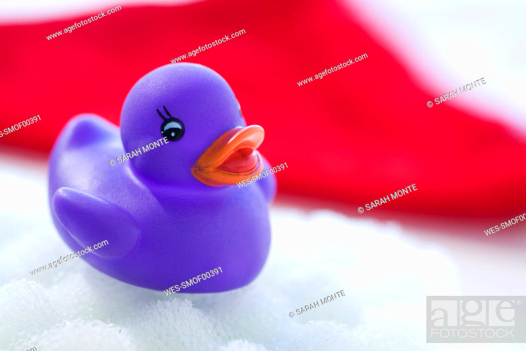 Stock Photo: Rubber duck floating on soapsud.