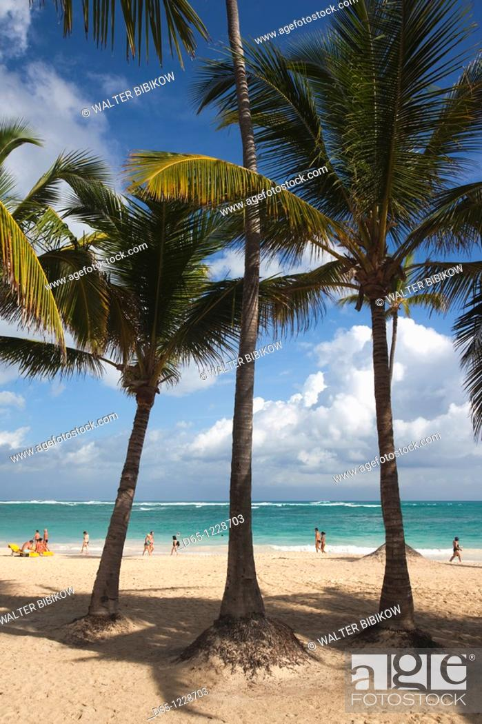 Stock Photo: Dominican Republic, Punta Cana Region, Bavaro, Bavaro beach.