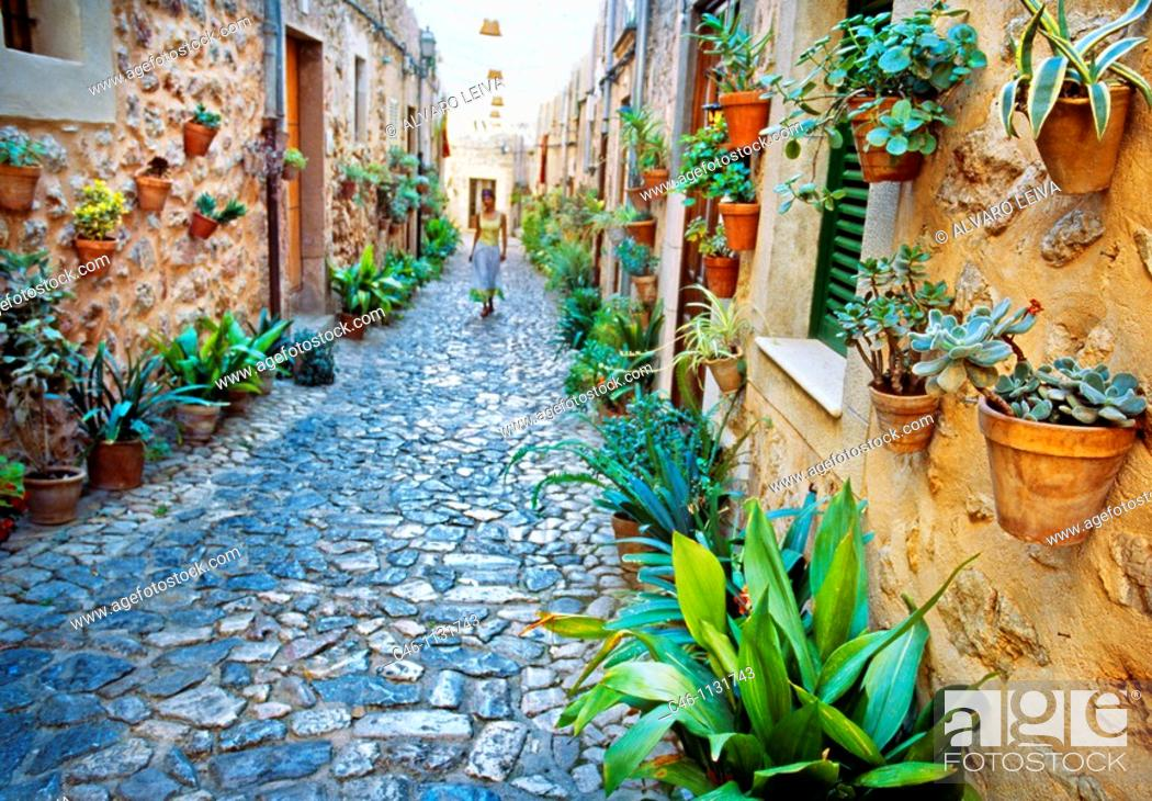 Stock Photo: Valldemosa. Majorca. Balearic Islands. Spain.