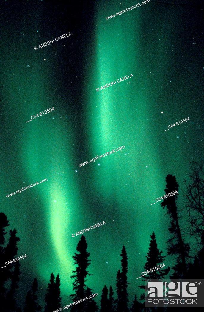 Stock Photo: Aurora Borealis or Nothern Lights, Denali, Alaska, USA.