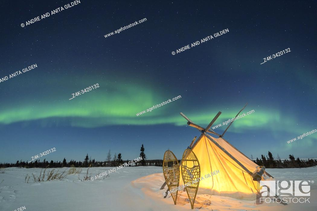 Imagen: Trappers tent with snowshoes and nightsky with Aurora borealis, Northern lights, Wapusk National Park, Manitoba, Canada.