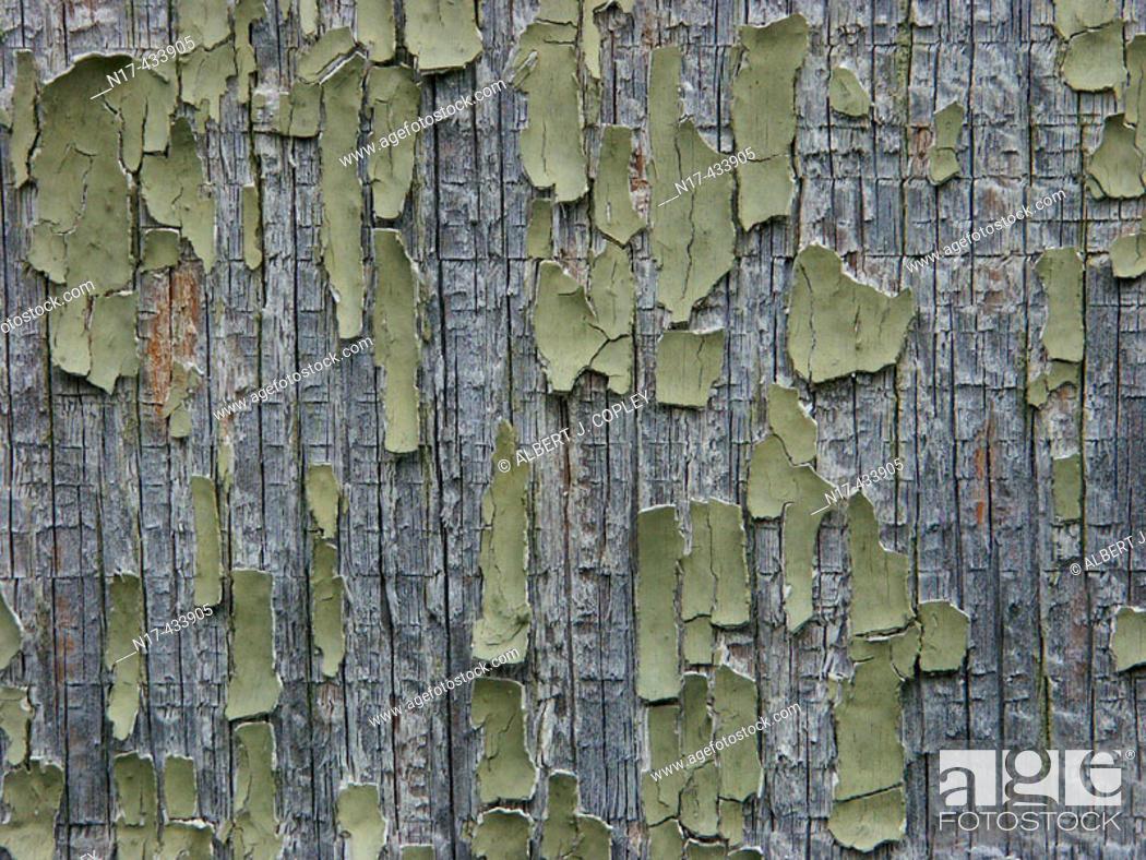 Stock Photo: Peeling paint and wood grain close up.
