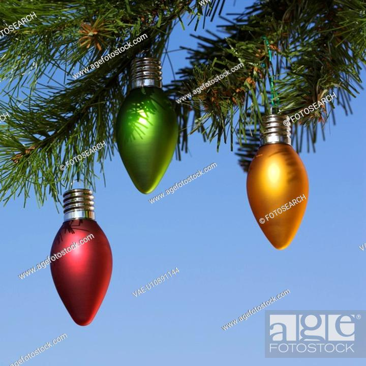 Stock Photo: Red, green and orange ornaments hanging on Christmas tree branch against blue background.