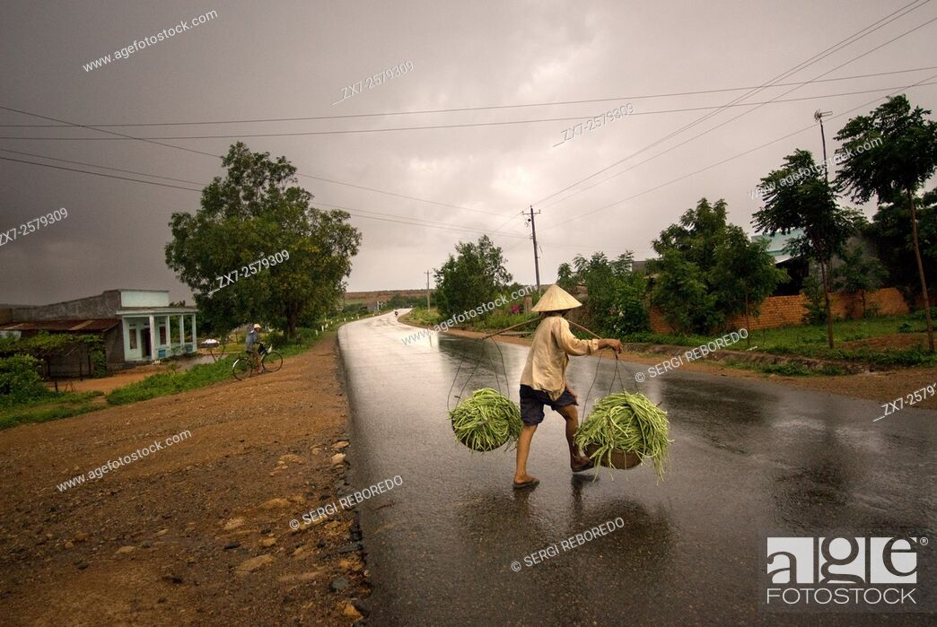 Stock Photo: A woman returns to the field after a rain on a road on the outskirts of Mui Ne. Vietnam.