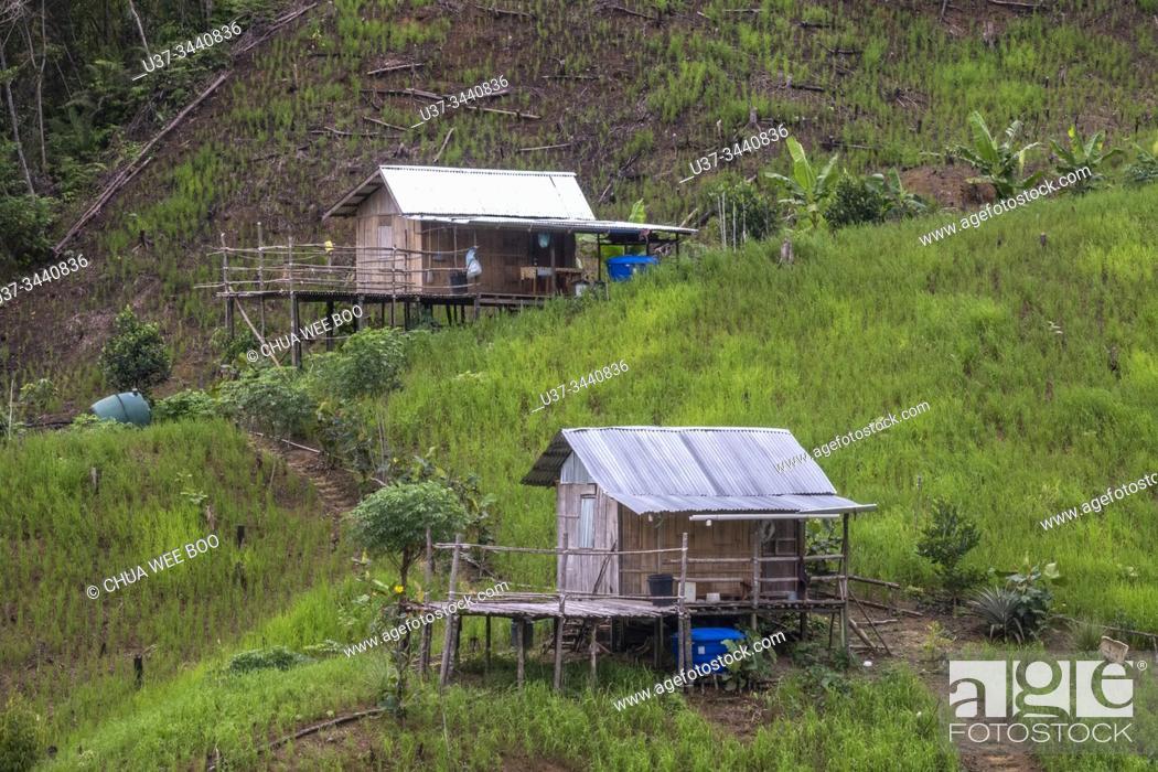 Stock Photo: Small wooden huts at Kampung Giam rice field, Padawan, Sarawak, Malaysia.