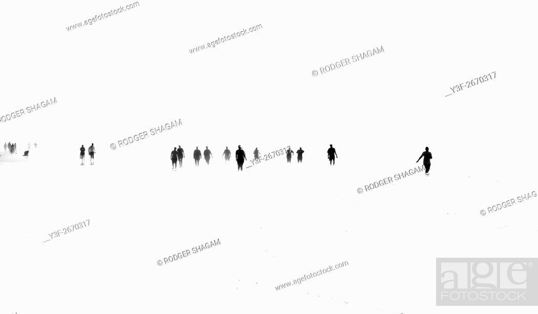 Stock Photo: People walking in the ocean at low tide.