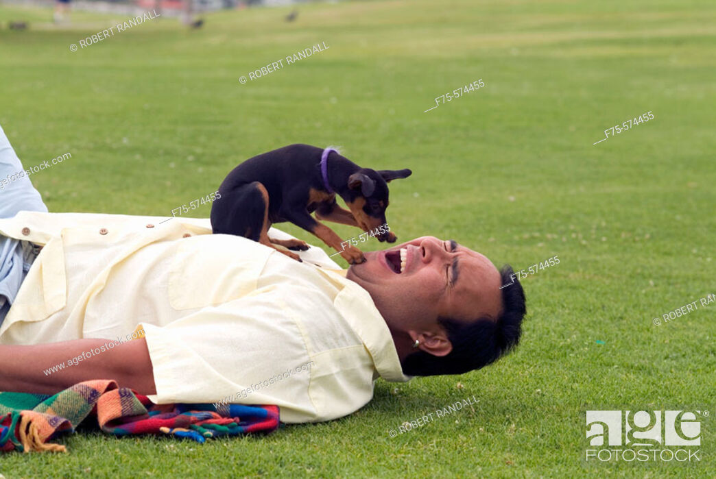 Stock Photo: Small dog pawing mans face at park in San Diego, CA.
