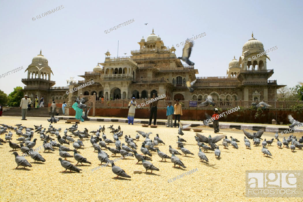 Stock Photo: People feeding pigeons outside a museum, Government Central Museum, Jaipur, Rajasthan, India.