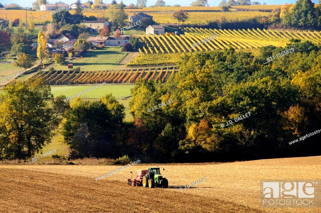 Stock Photo: France, Aquitaine, Dordogne, corn fields and vineyards near Vélines.