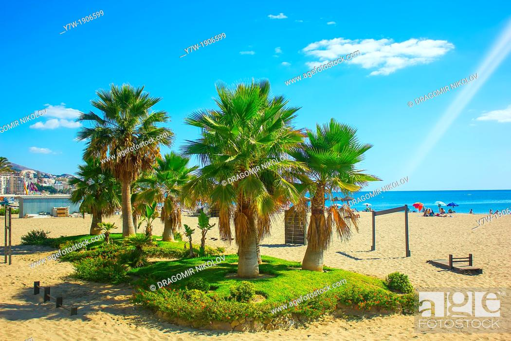 Stock Photo: Palm trees on a beach in Fuengirola, Andalusia region, Costa del Sol, Spain.