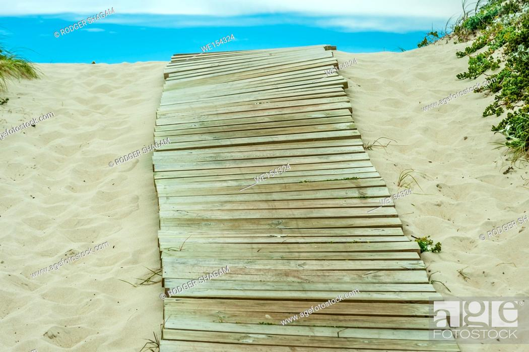 Imagen: Boardwalk to the beach over a coastal dume. the walkway helps protect the dune from eroding. Cape Town, South Africa. On the Table Bay coastline.