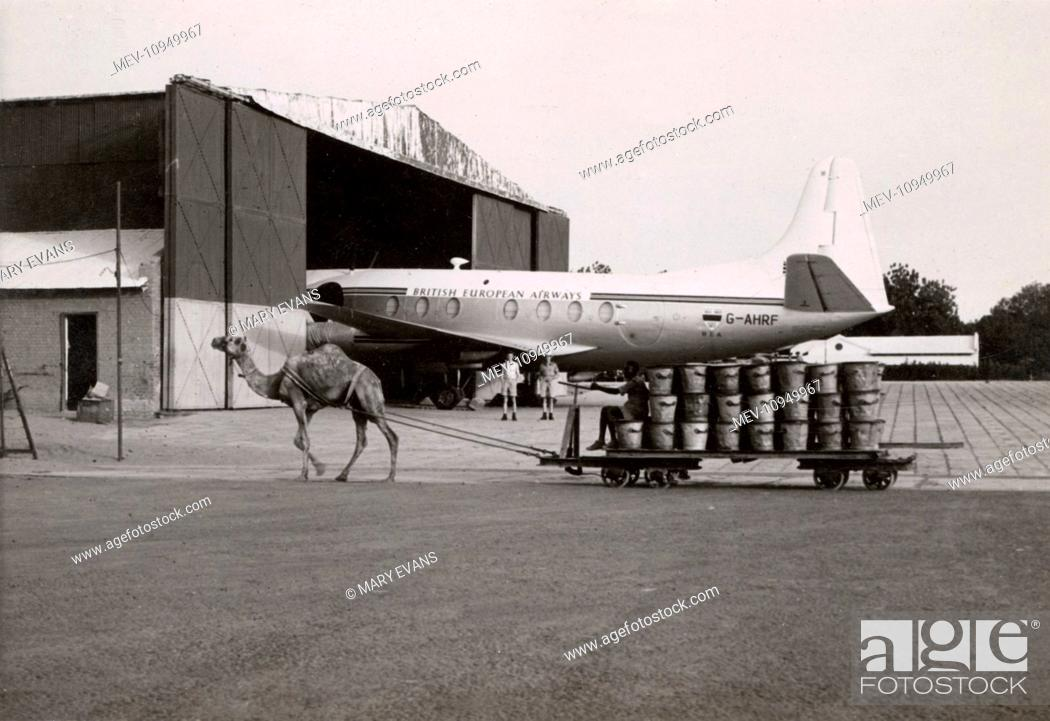 Stock Photo: Scene with camel and plane at Khartoum Airport, Sudan. The camel is pulling a trolley. The plane is a BEA/Ministry of Supply Vickers Viscount, prototype G-AHRF.