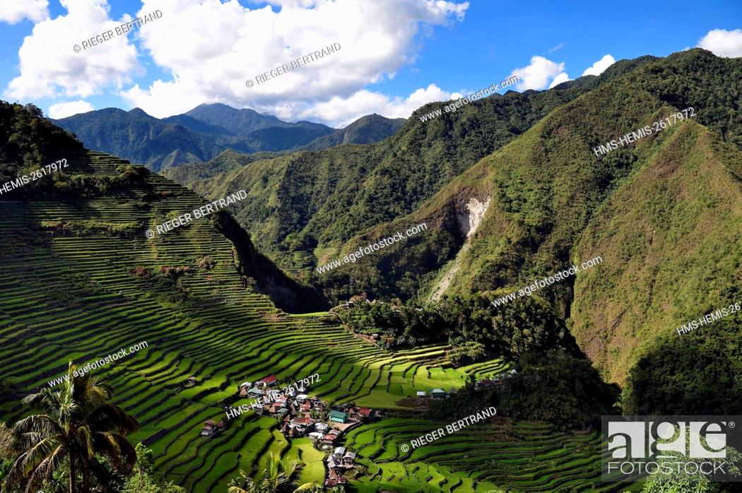 Photo de stock: Philippines, Ifugao province, Banaue rice terraces around the village of Batad, listed as World Heritage by UNESCO, fed by an ancient irrigation system from the.