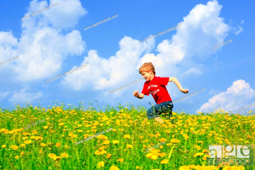 Stock Photo: boy running through field of Dandelions,Zuercher Oberland, Zuerich, Switzerland.