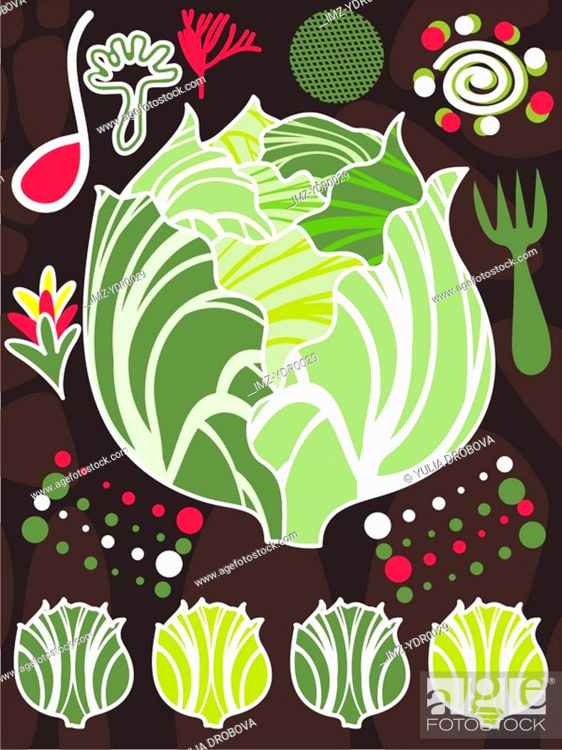 Stock Photo: An illustration about lettuce and salad.